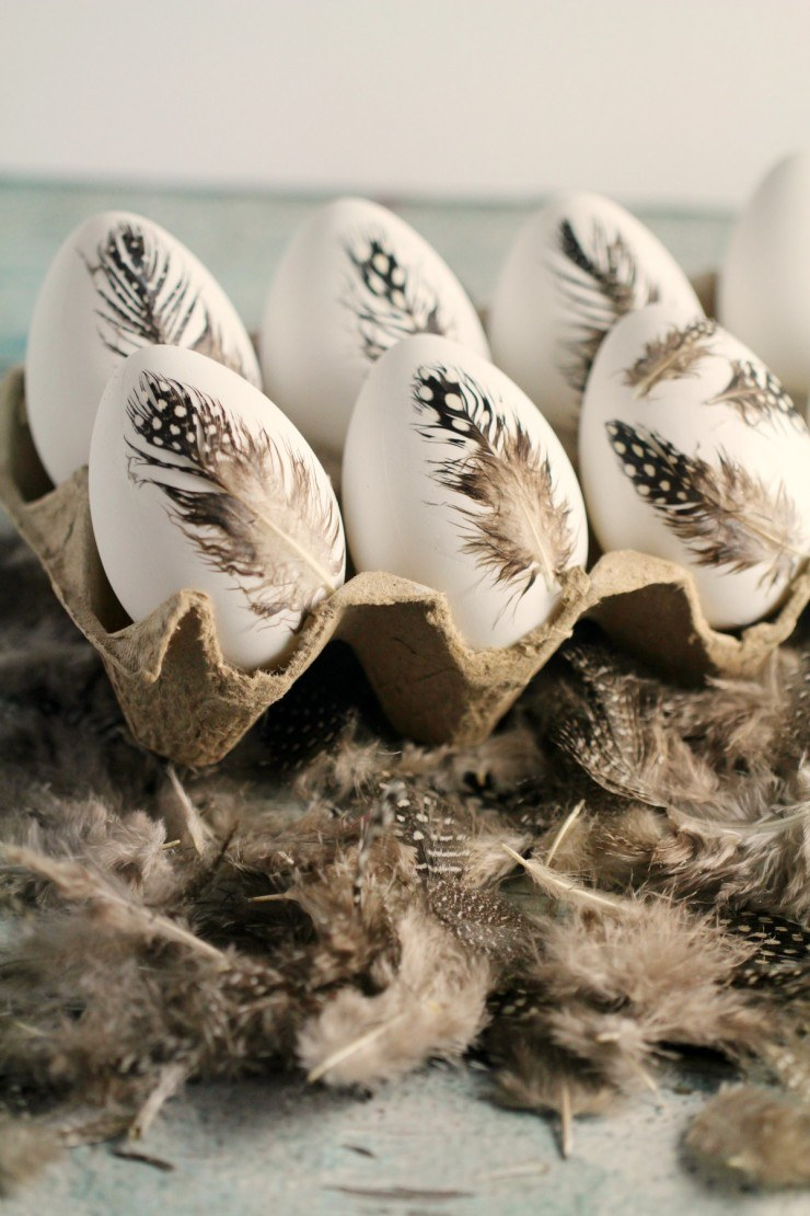feather-eggs-4